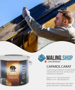 Caparol Carat træbeskyttelse fakta